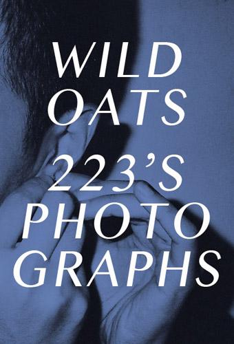 http://linzhipeng223.com/files/gimgs/20_wildoats-01.jpg